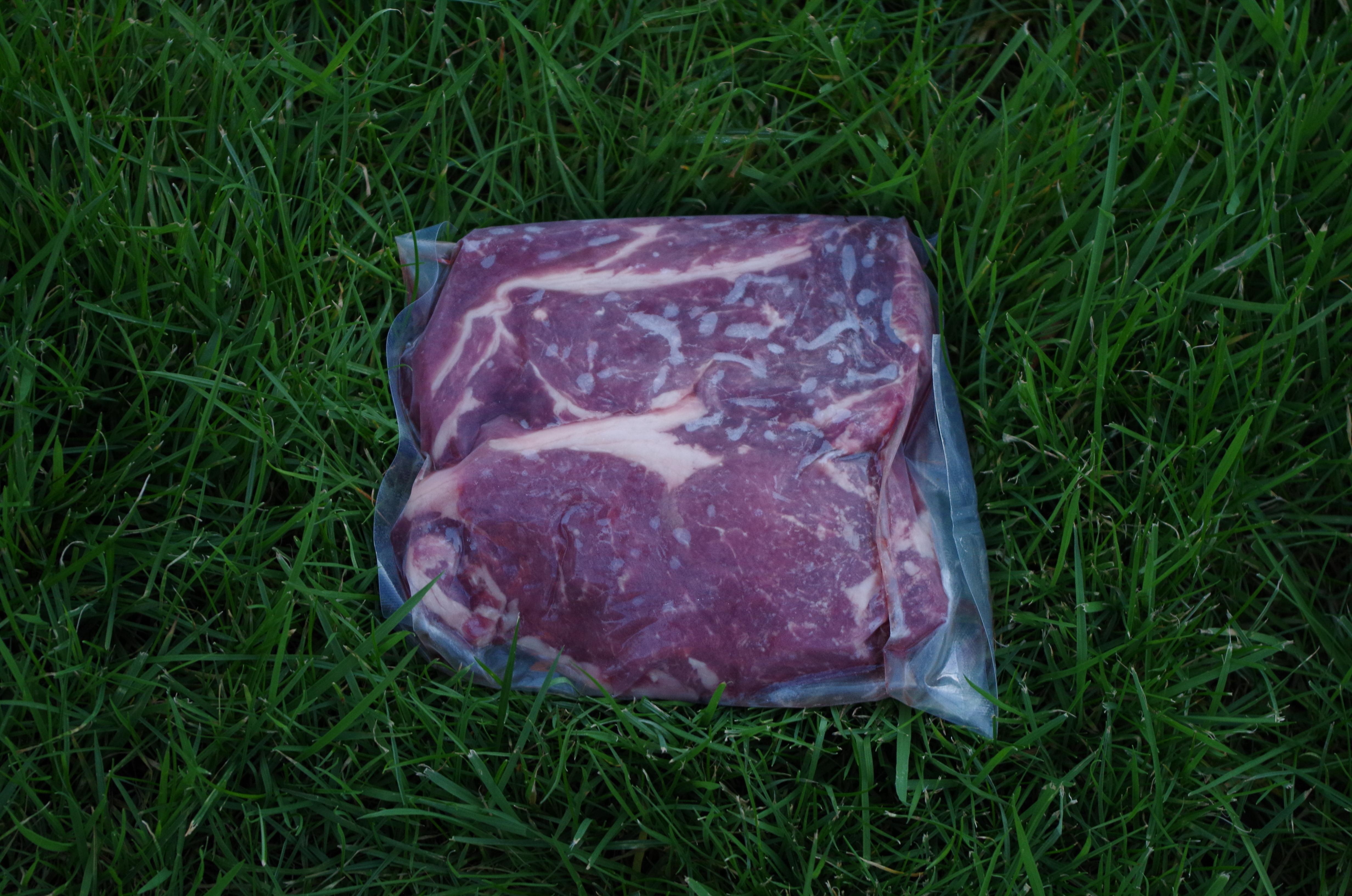 grass fed ribeye steak